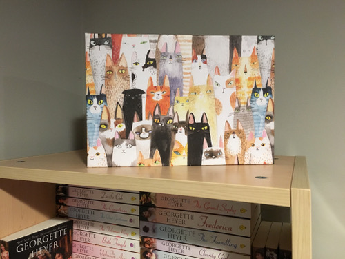 Name:  cat-storage-box-small.jpg Views: 94 Size:  71.7 KB